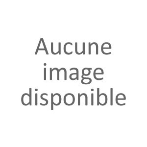 FRAISE 6 POINTES 20 - POUR AXE 22 TYPE RT3200, RM320